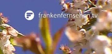 Beitrag Franken Fernsehen